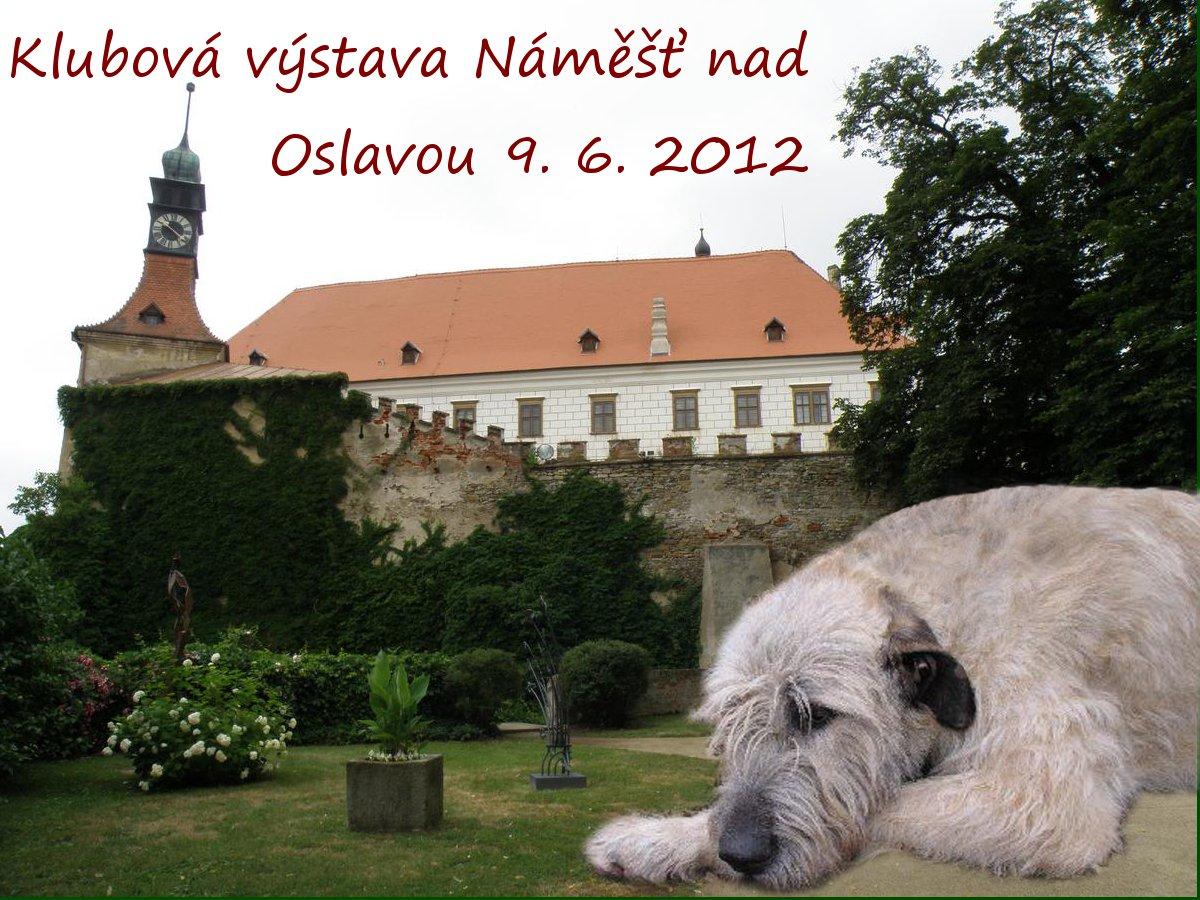 KV WDK Náměšť nad Oslavou - 9. 6. 2012
